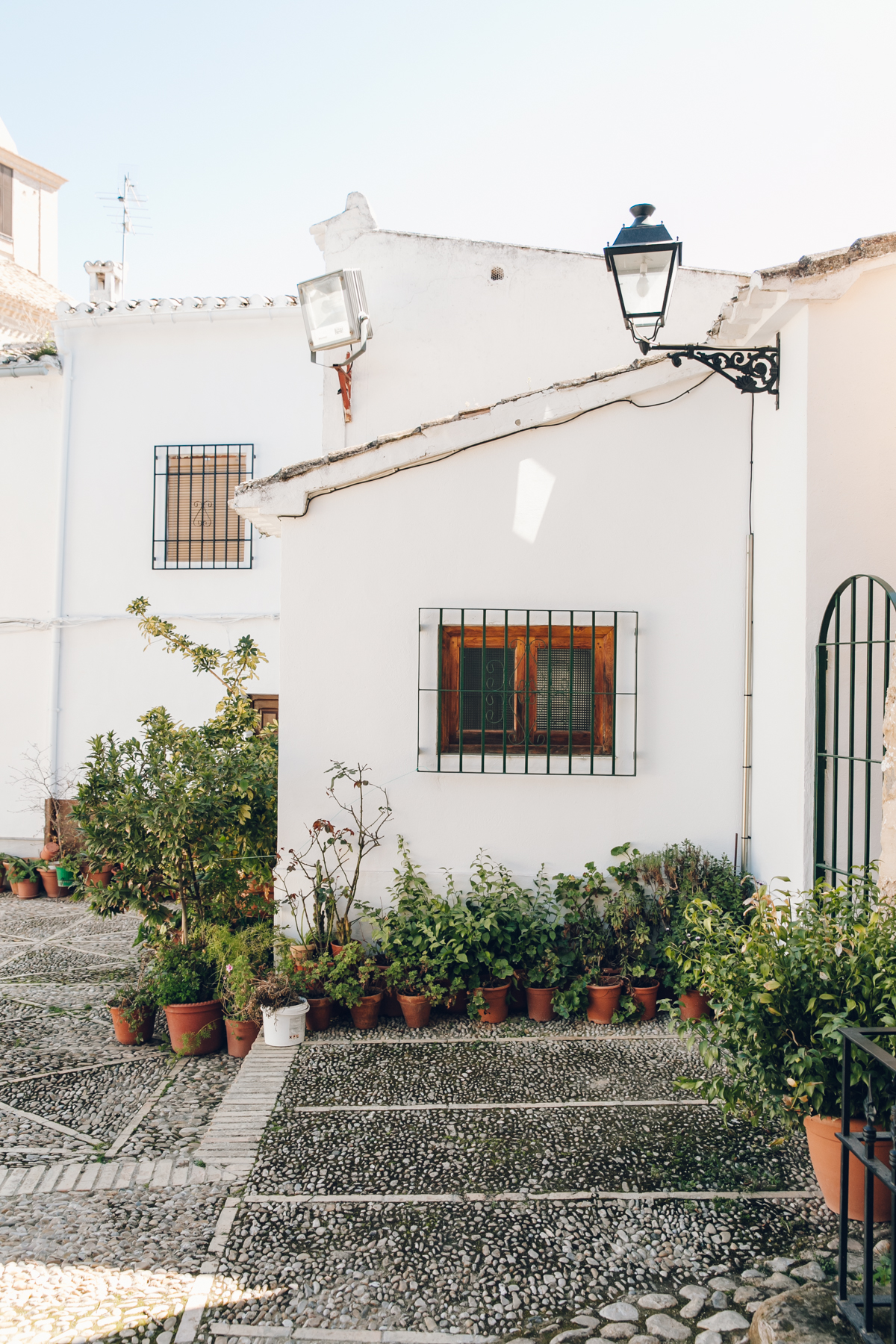 Plant-filled patios in Andalusia, Spain.