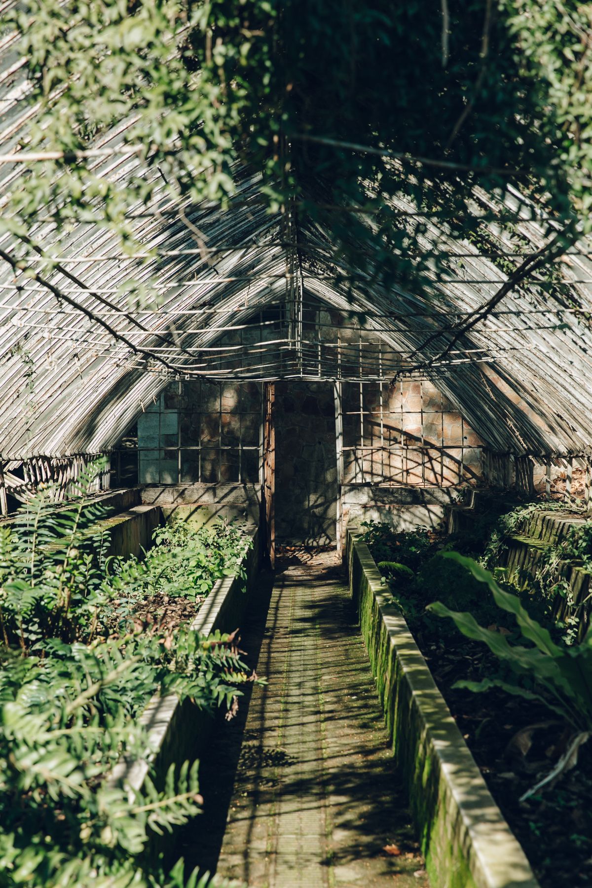 The dilapidated greenhouse in Malaga Botanical Gardens, Spain.