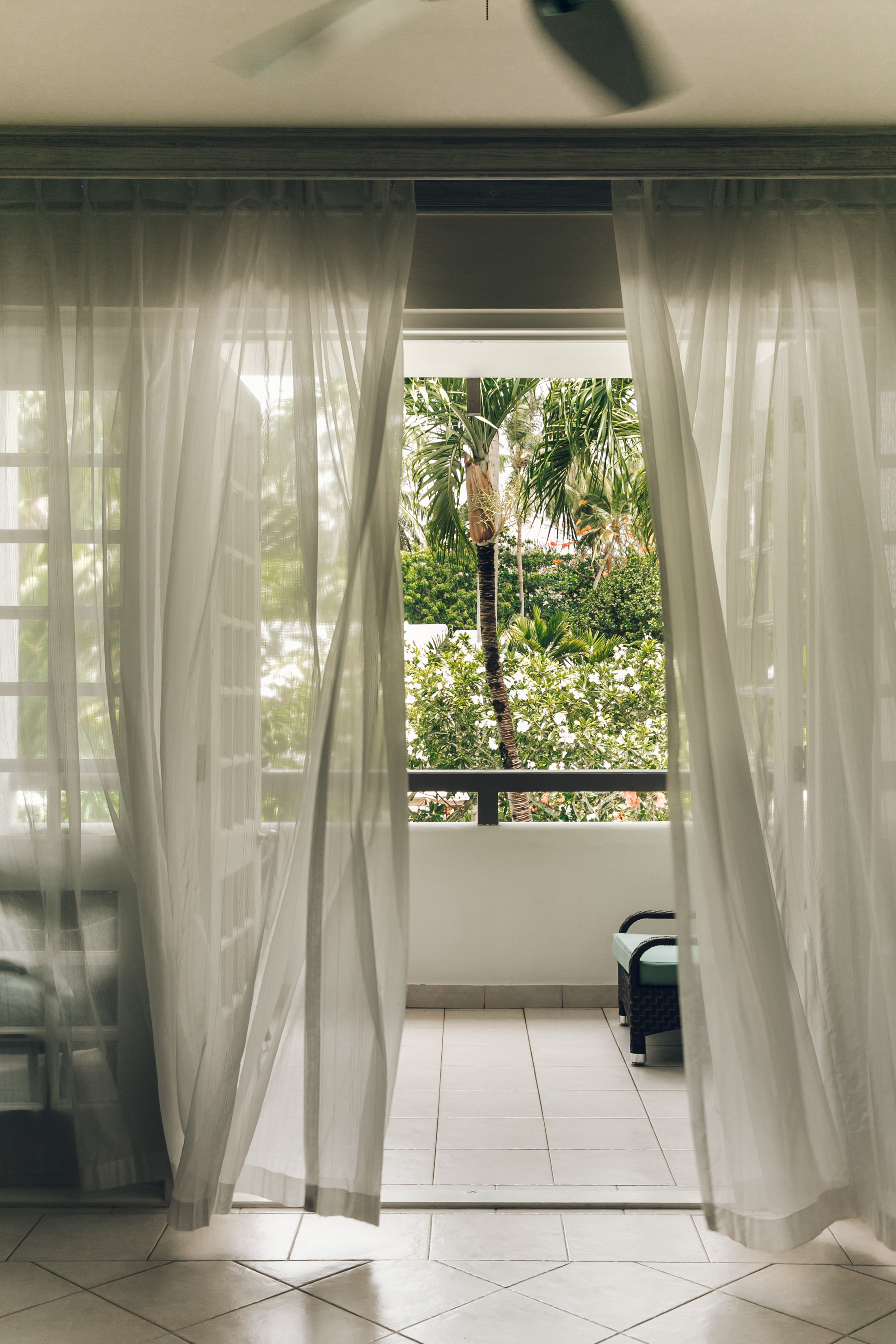 Tropical views from our room at Colony Club by Elegant Hotels in Barbados.