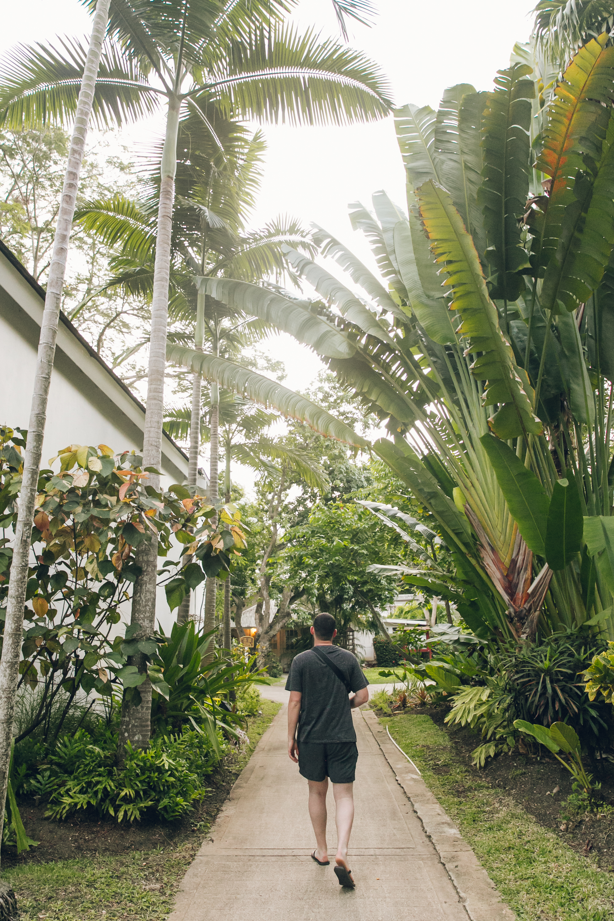 The tropical garden at Colony Club by Elegant Hotels in Barbados.
