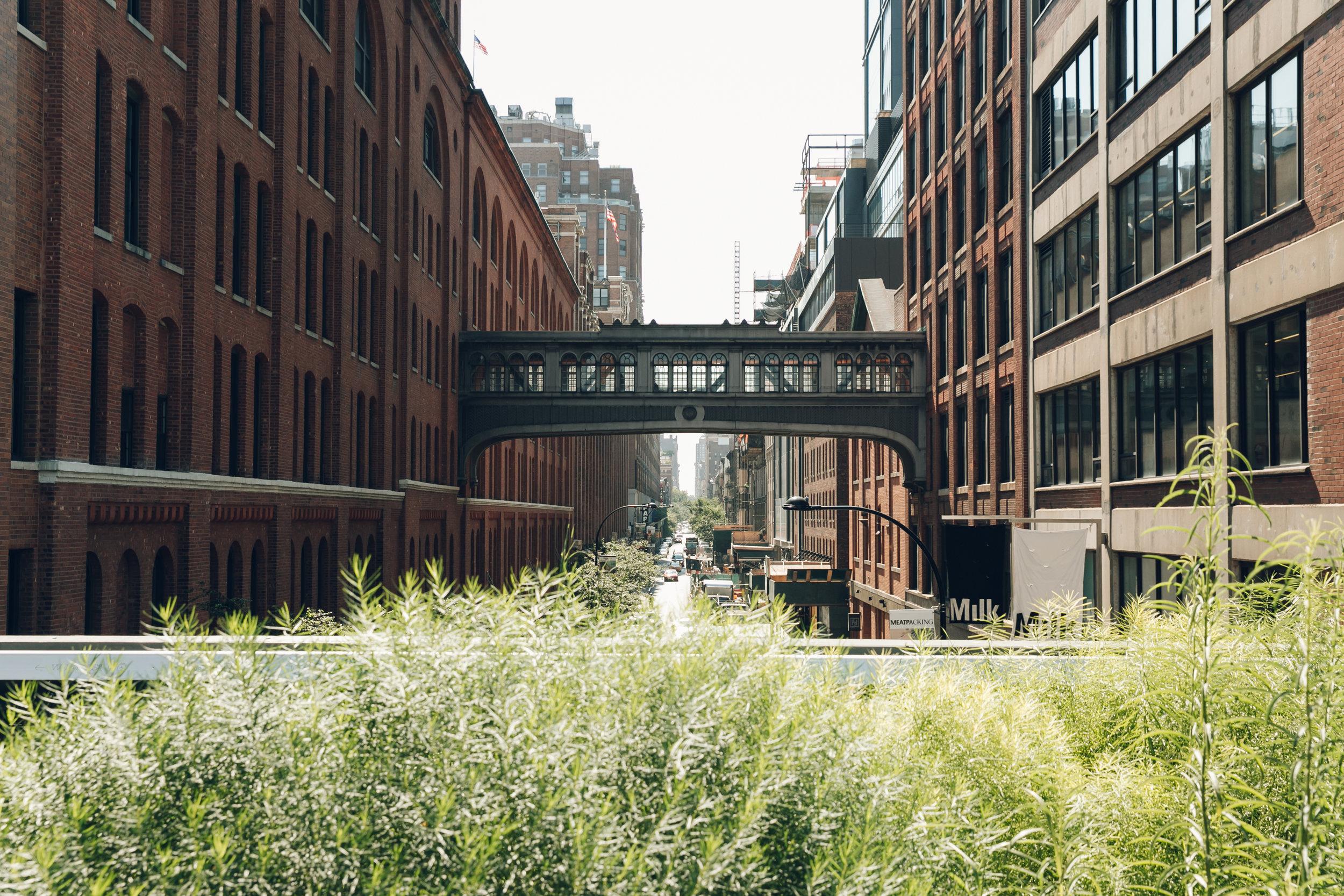 The High Line NYC Bridge Over Street