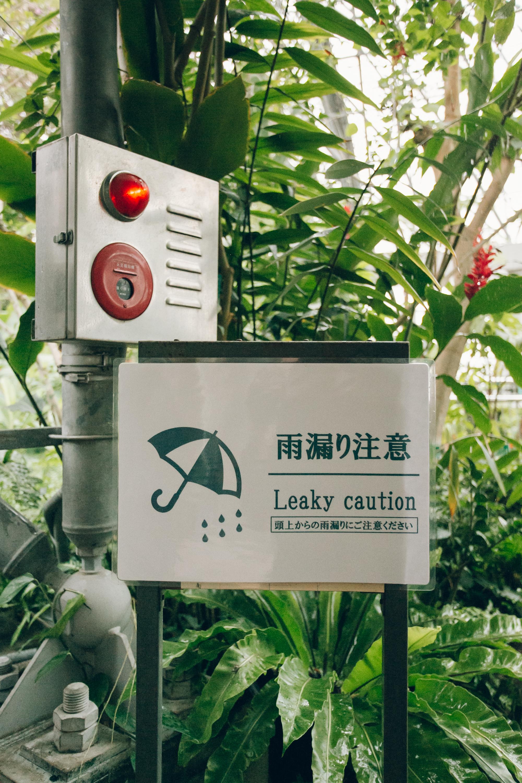 Yumenoshima Greenhouse in Tokyo.