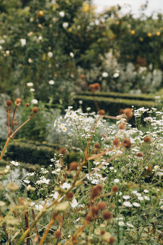 Sissinghurst Castle Garden in Kent - by Haarkon.