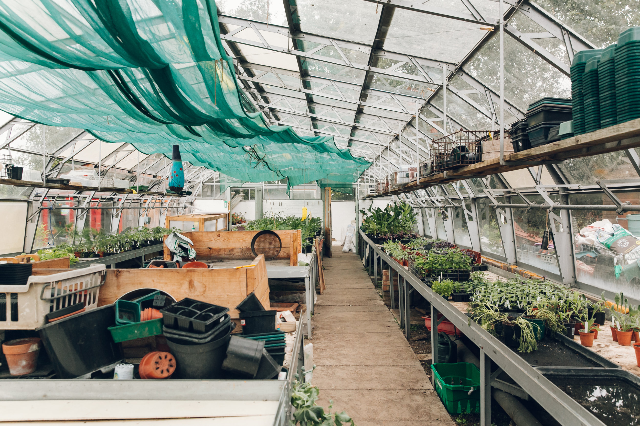 Brockwell Park Community Greenhouses photographed by Haarkon