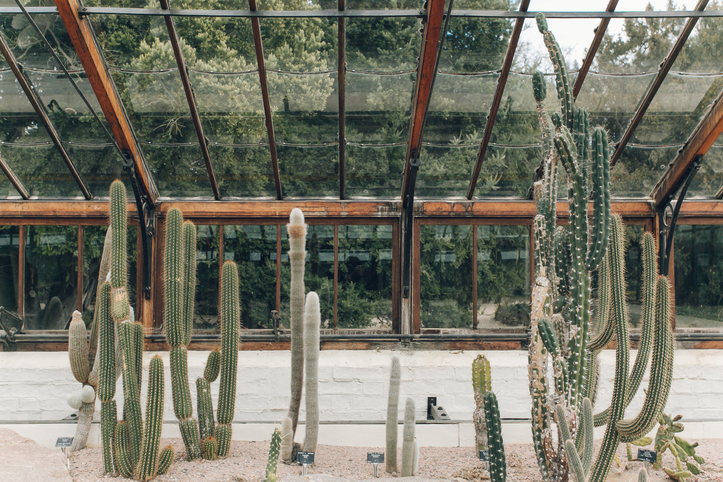 University of Cambridge Botanic Garden, photographed by Haarkon