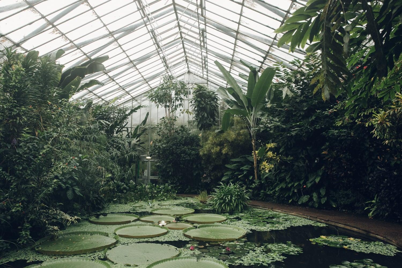 Greenhouses -