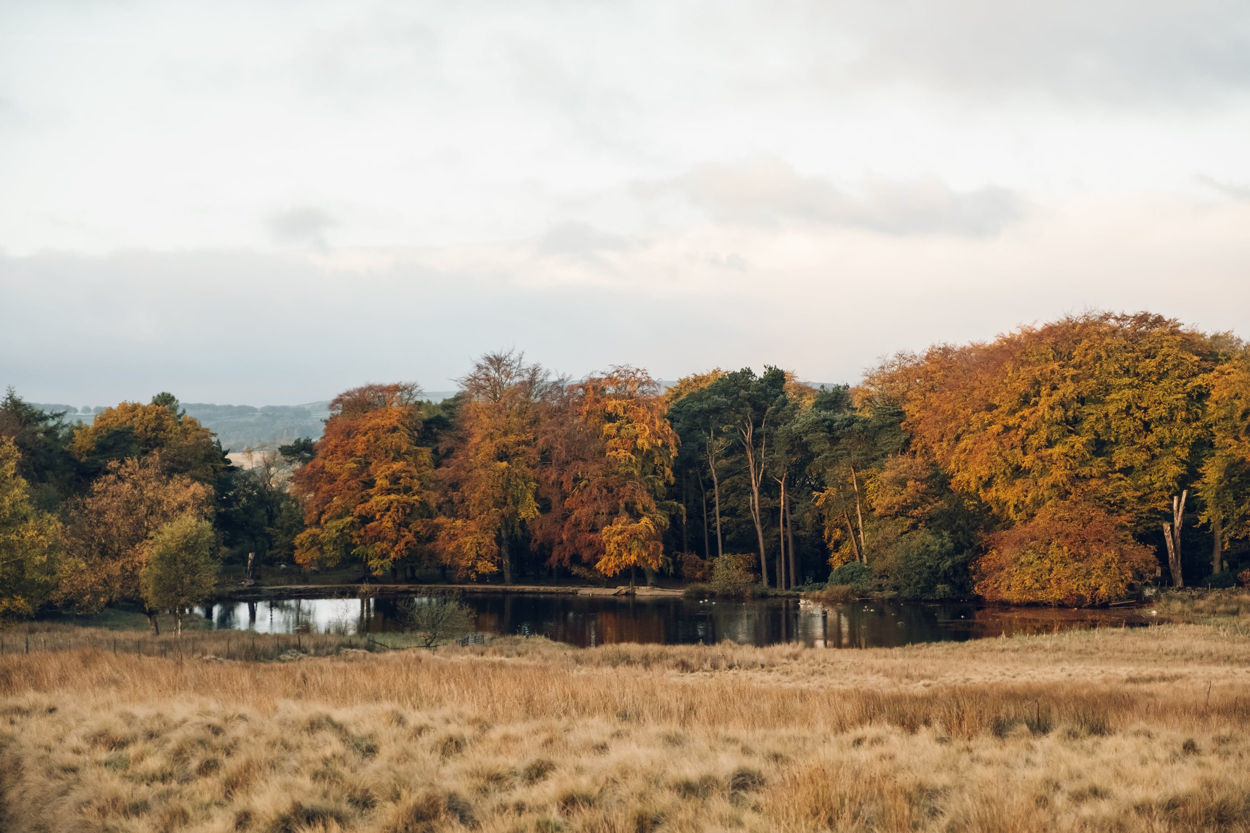 Autumn Colours in the Peak District by Haarkon