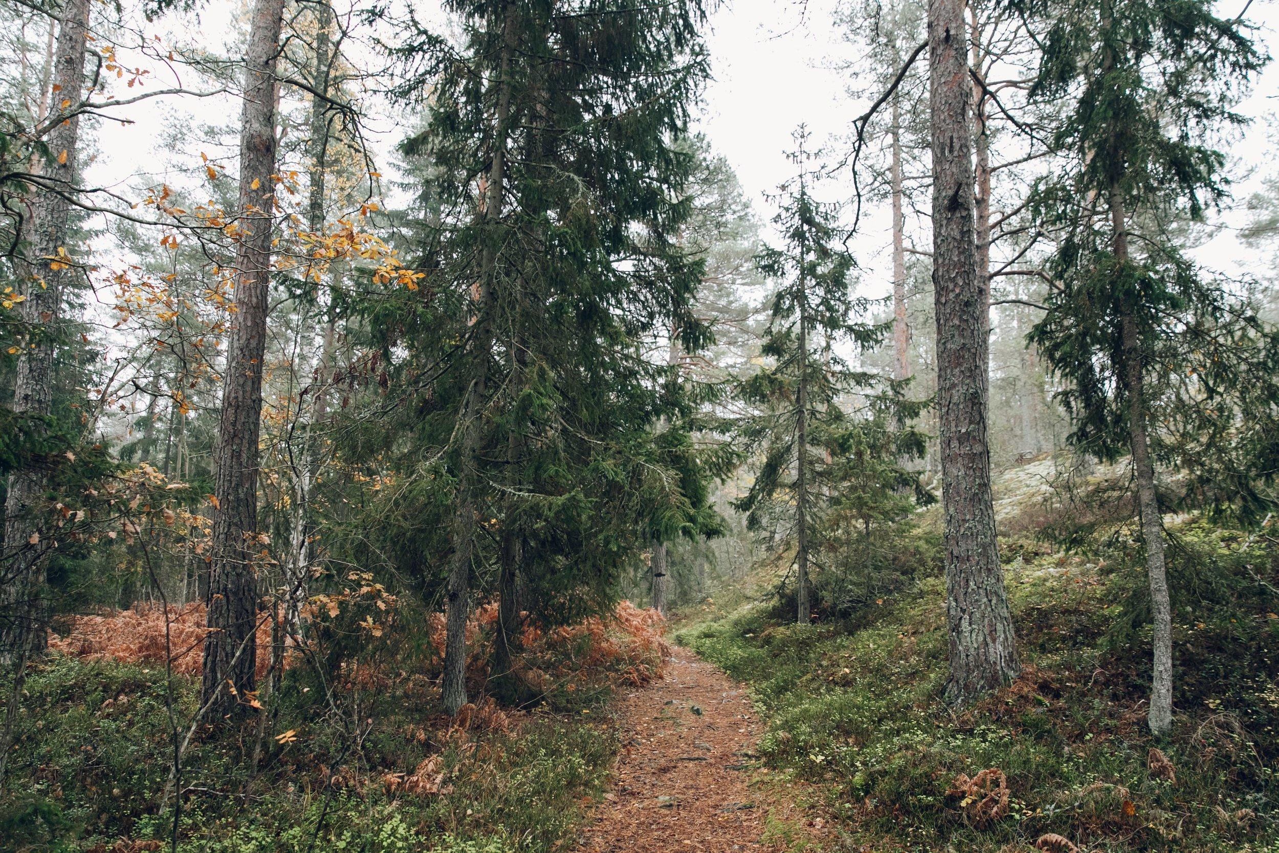 Gränsö in Västervik, Sweden by Haarkon.
