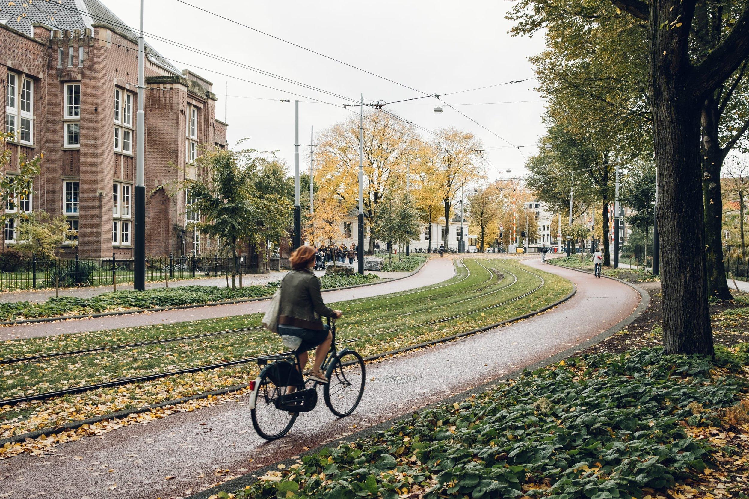 Amsterdam November 2018-33.jpg