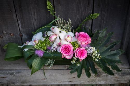 fleurs+Laurence-4182 copy.jpg