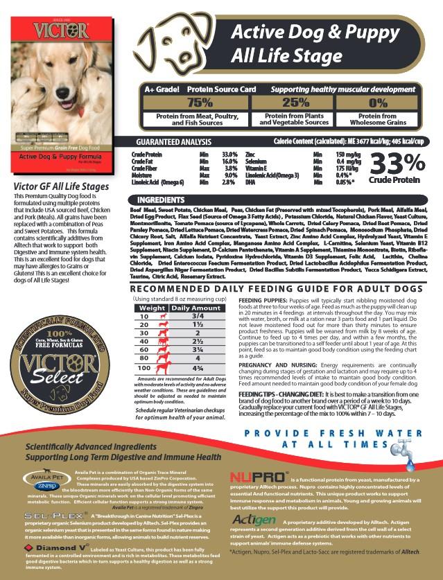 Victor GF Active-Puppy Image.jpg