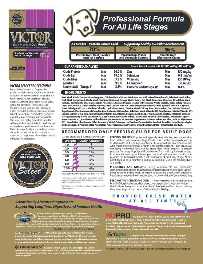 Victor Professional Image.jpg