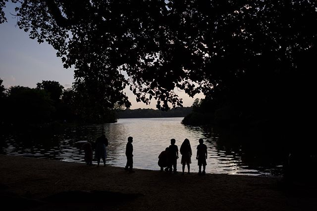 prospect park evening