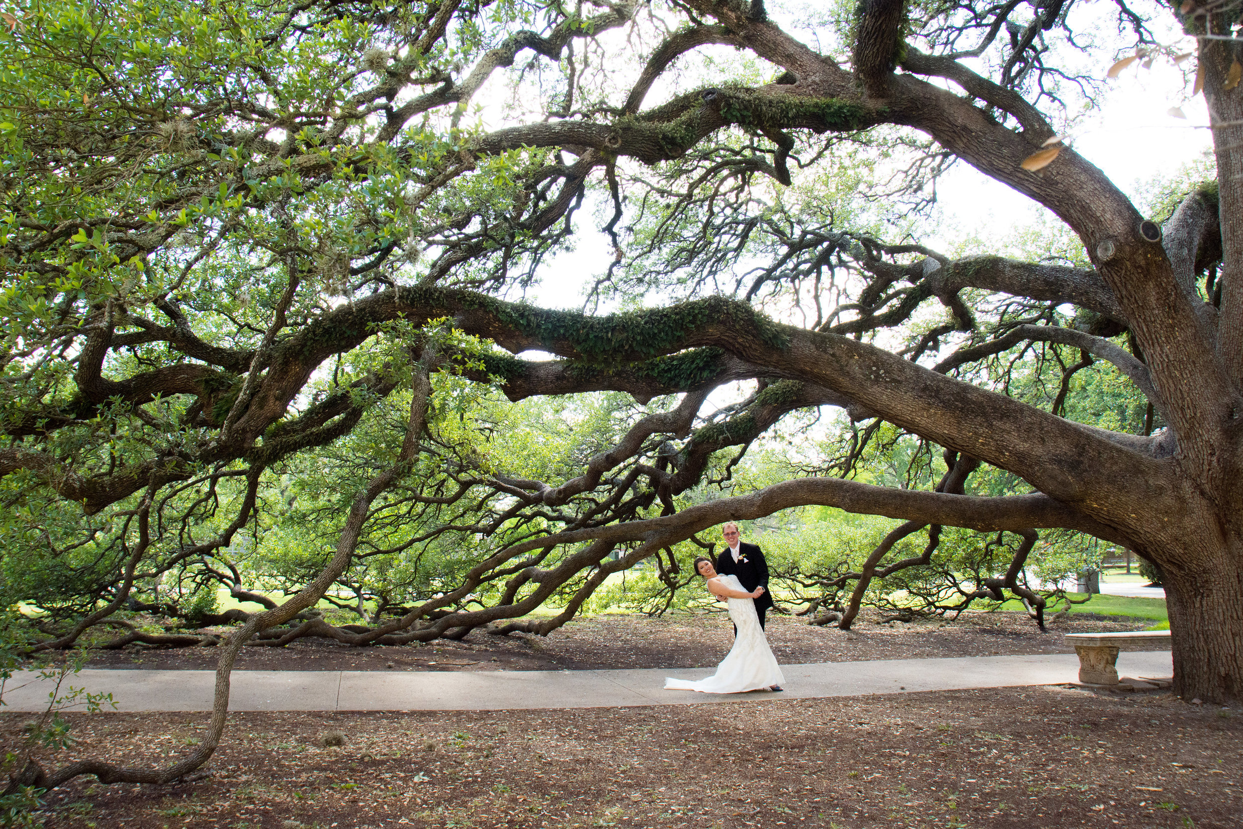 The Century Tree on Texas A&M University's campus is very special to the students and alumni. Tradition says that if a couple walks under the special tree, their love will last a lifetime. We have no doubts about the Hicks.