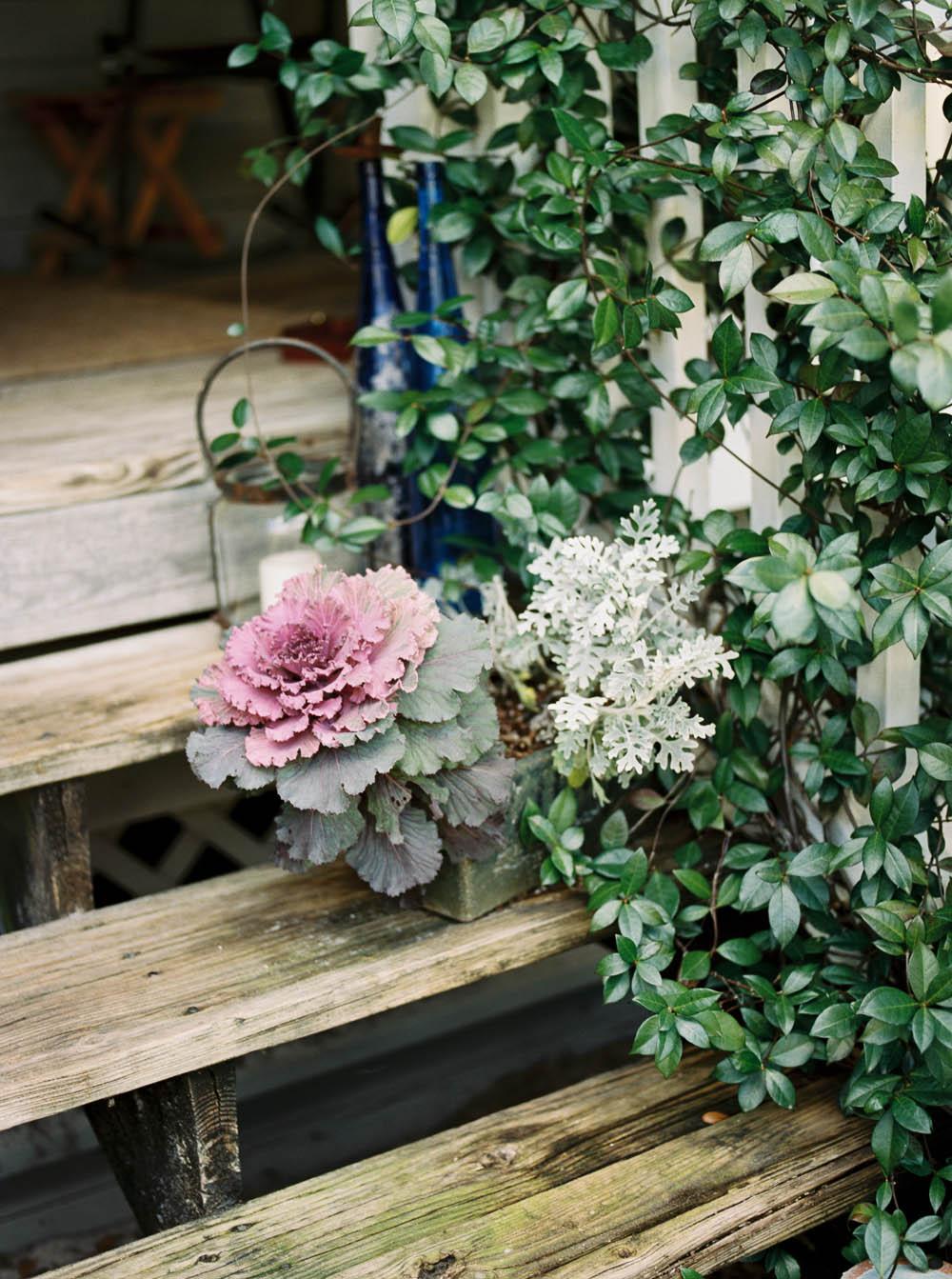 web grayton beach 30a florist lifestyle photography day in the life editorial film ©2016abigailbobophotography-14.jpg