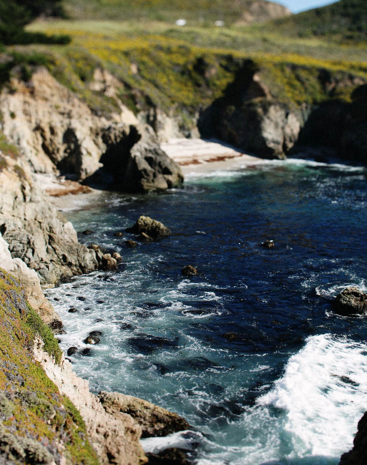 big sur commercial film photographer natural phtoojournalistic photographs california ©2016abigailbobophotography-6.jpg