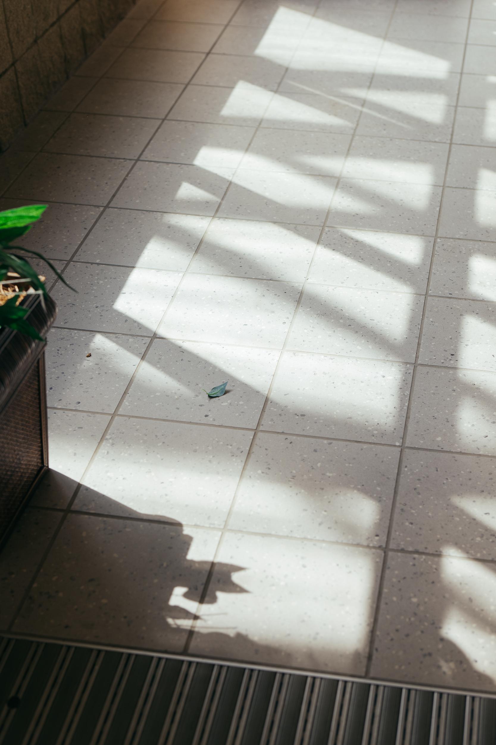 nashville united states commercial education photographers photojournalistic documentary ©2019abigailbobophotography-20.jpg