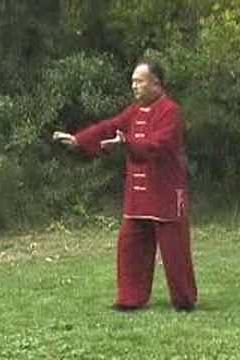 Master Zhang Xue Xin