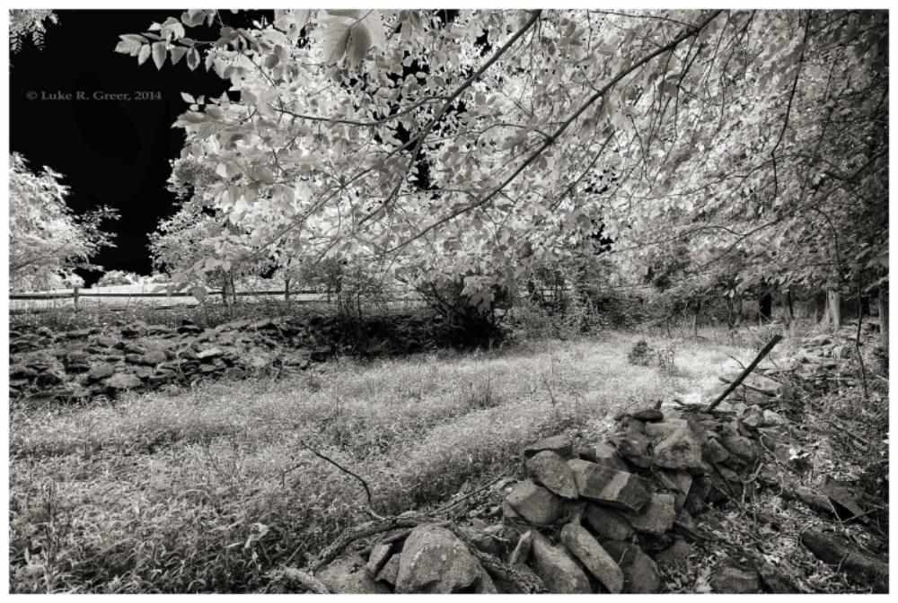 Sunken Road looking west-Luke Greer photo.JPG