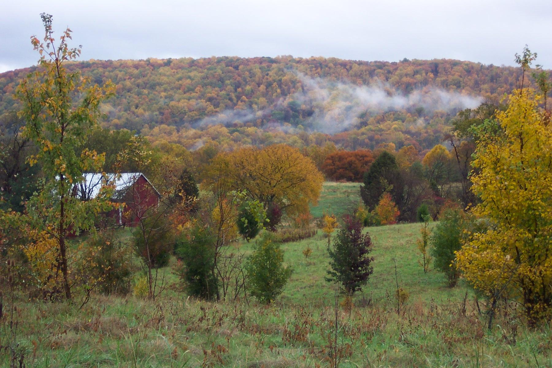 Mist over Furnace Mountain near Lovettsville, Loudoun County.