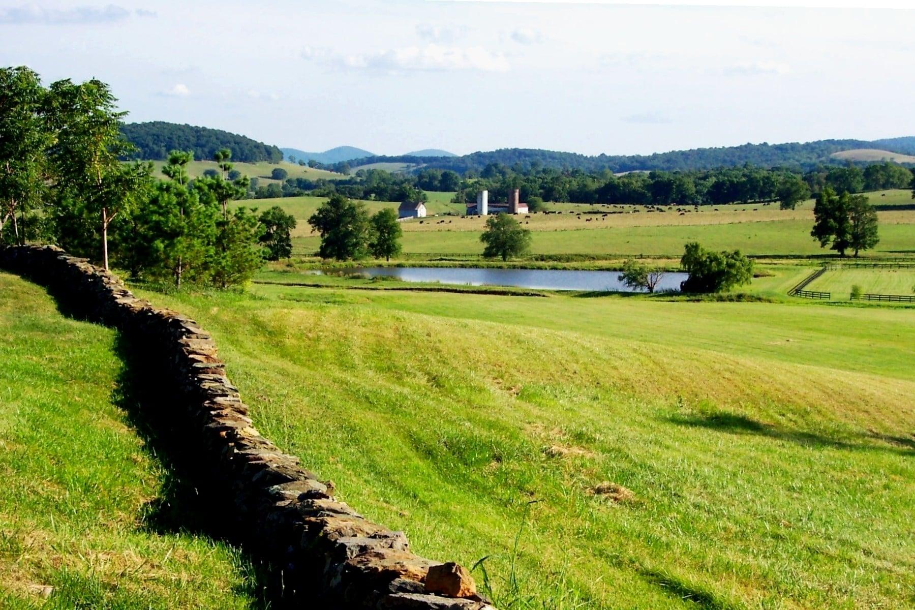 Ovoka Farm overlooking Crooked Run Valley near Paris, Fauquier County.