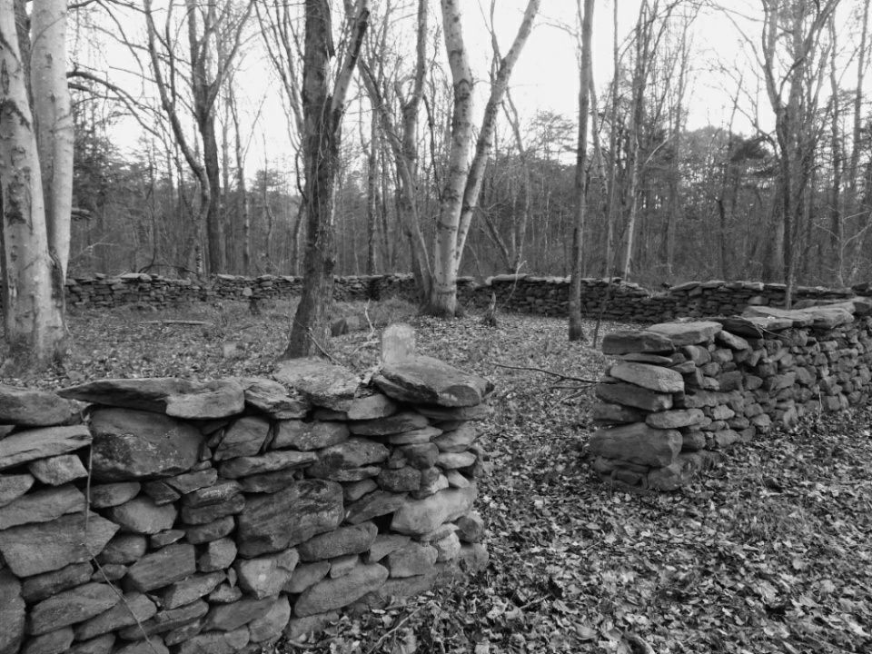 A long forgotten cemetery in the Fauquier County Free State
