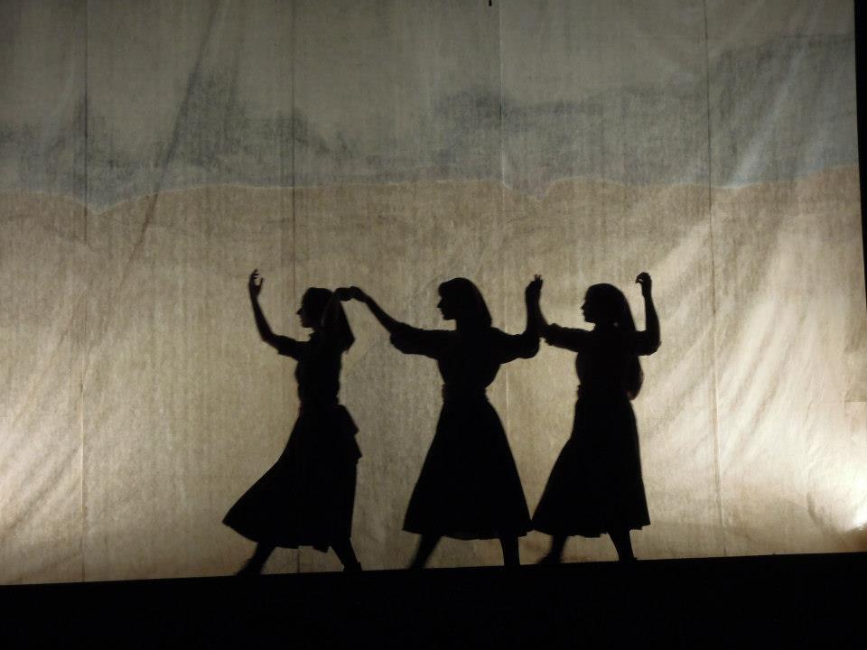 fiddler shadow.jpg