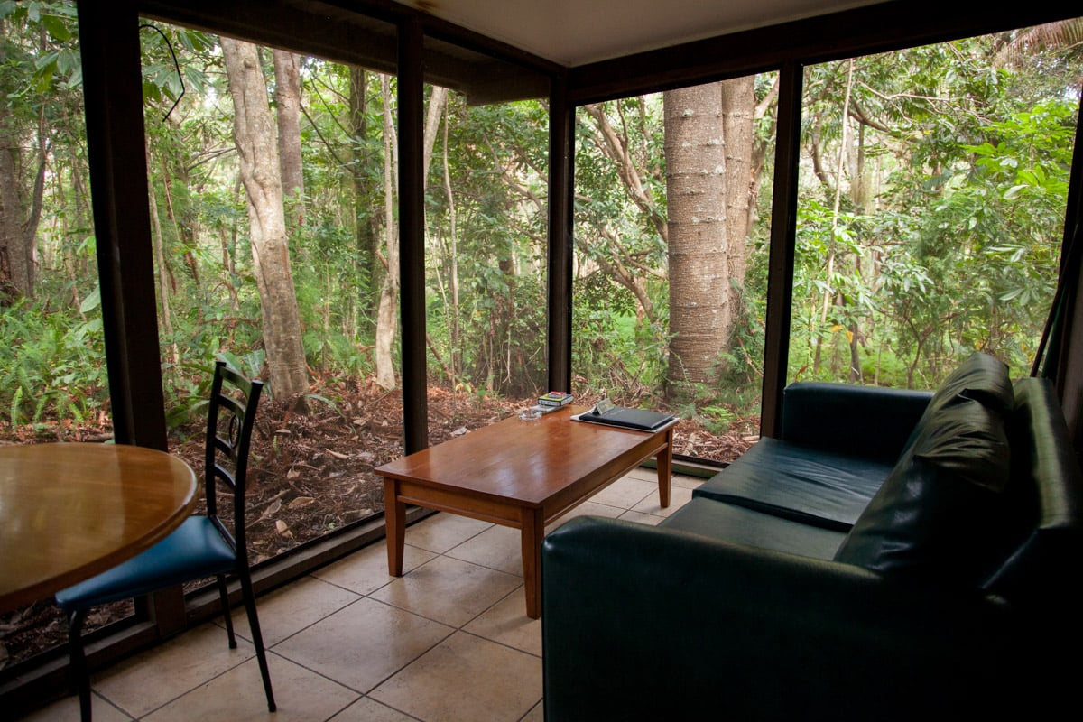 The open air porch of our cabin looking out to dense rainforest