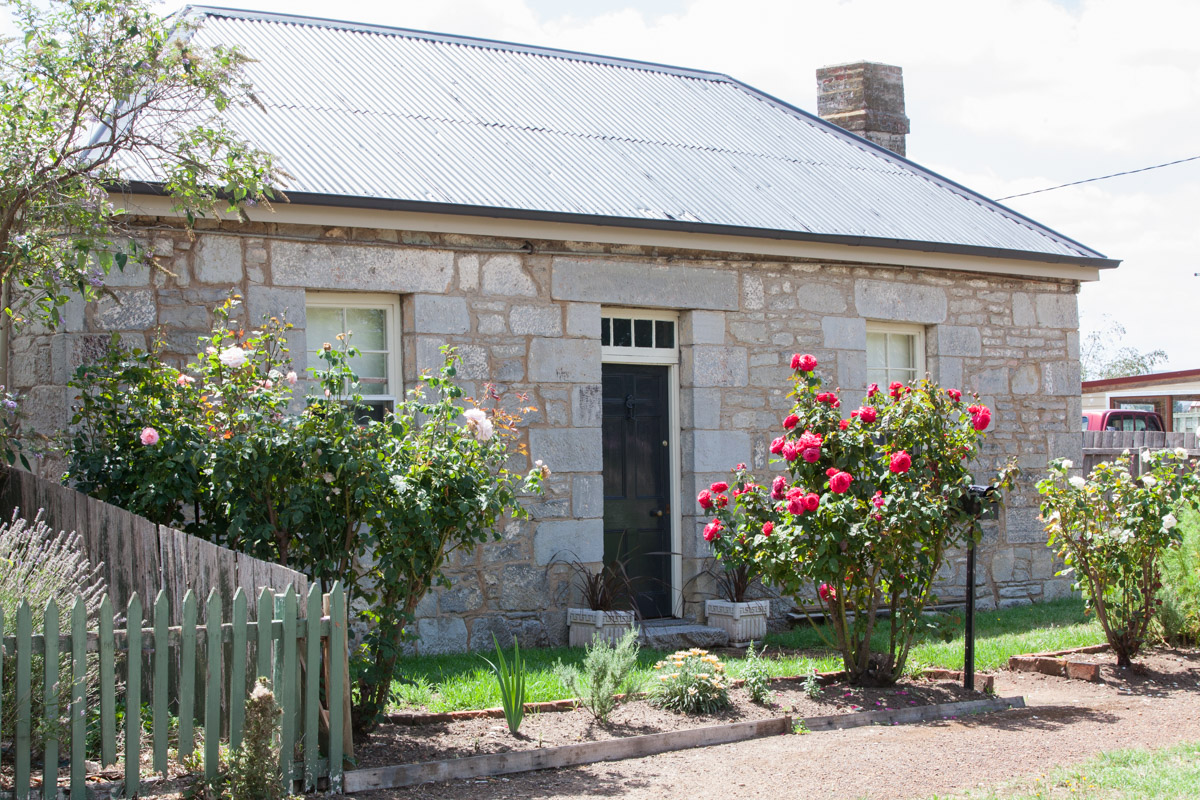 Macca_Tasmania_9554.jpg
