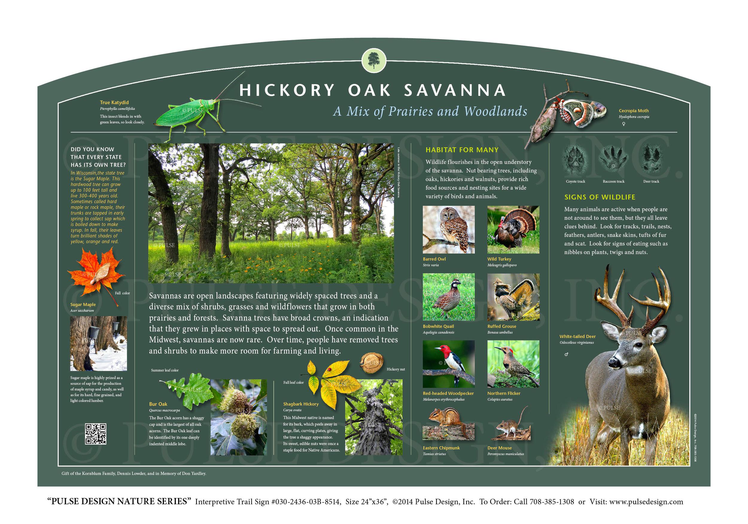 Interpretive Nature Trail Sign, Prairie and Grassland Habitats, Hickory Oak Savanna