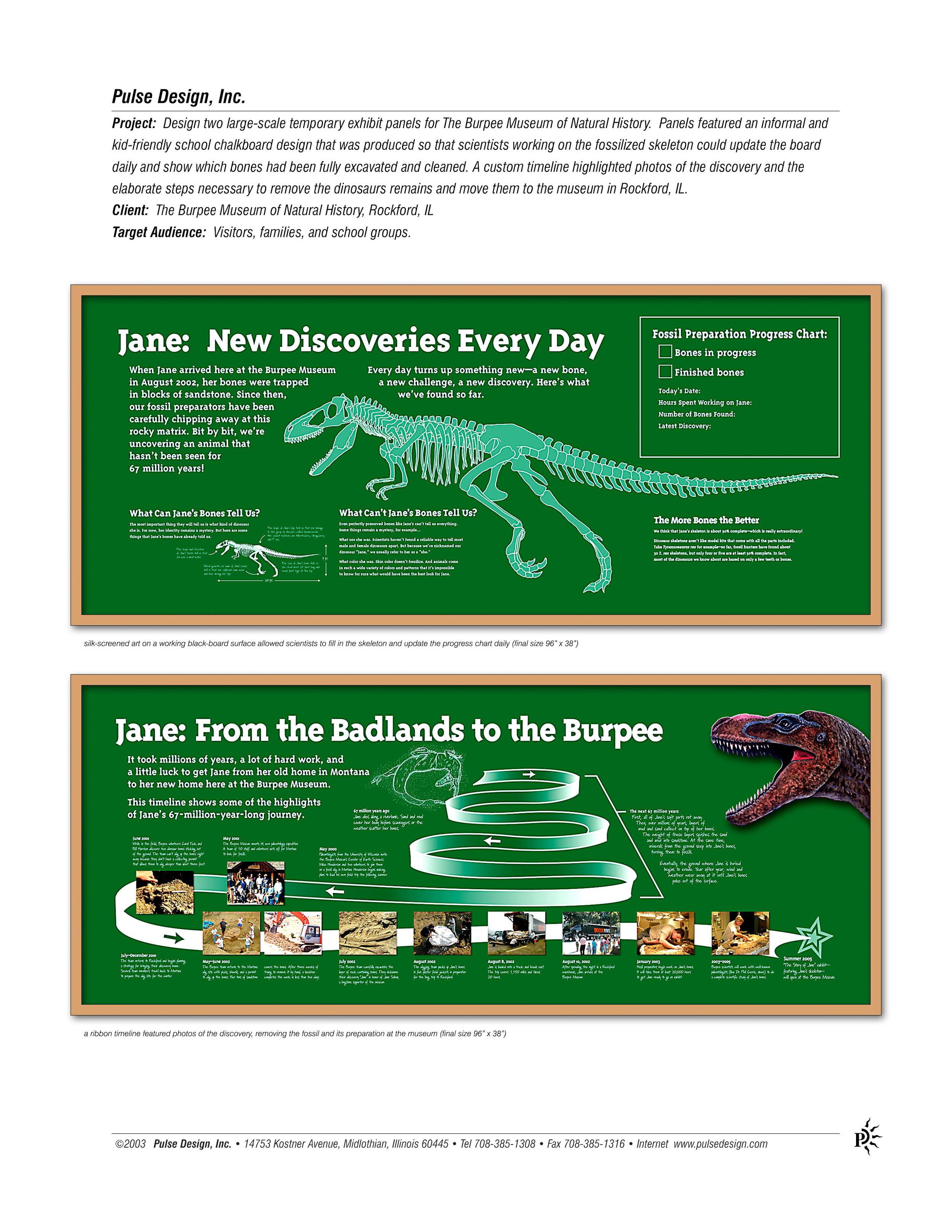 Burpee-Museum-Jane-Dinosaur-Exhibit-Pulse-Design-Inc.jpg