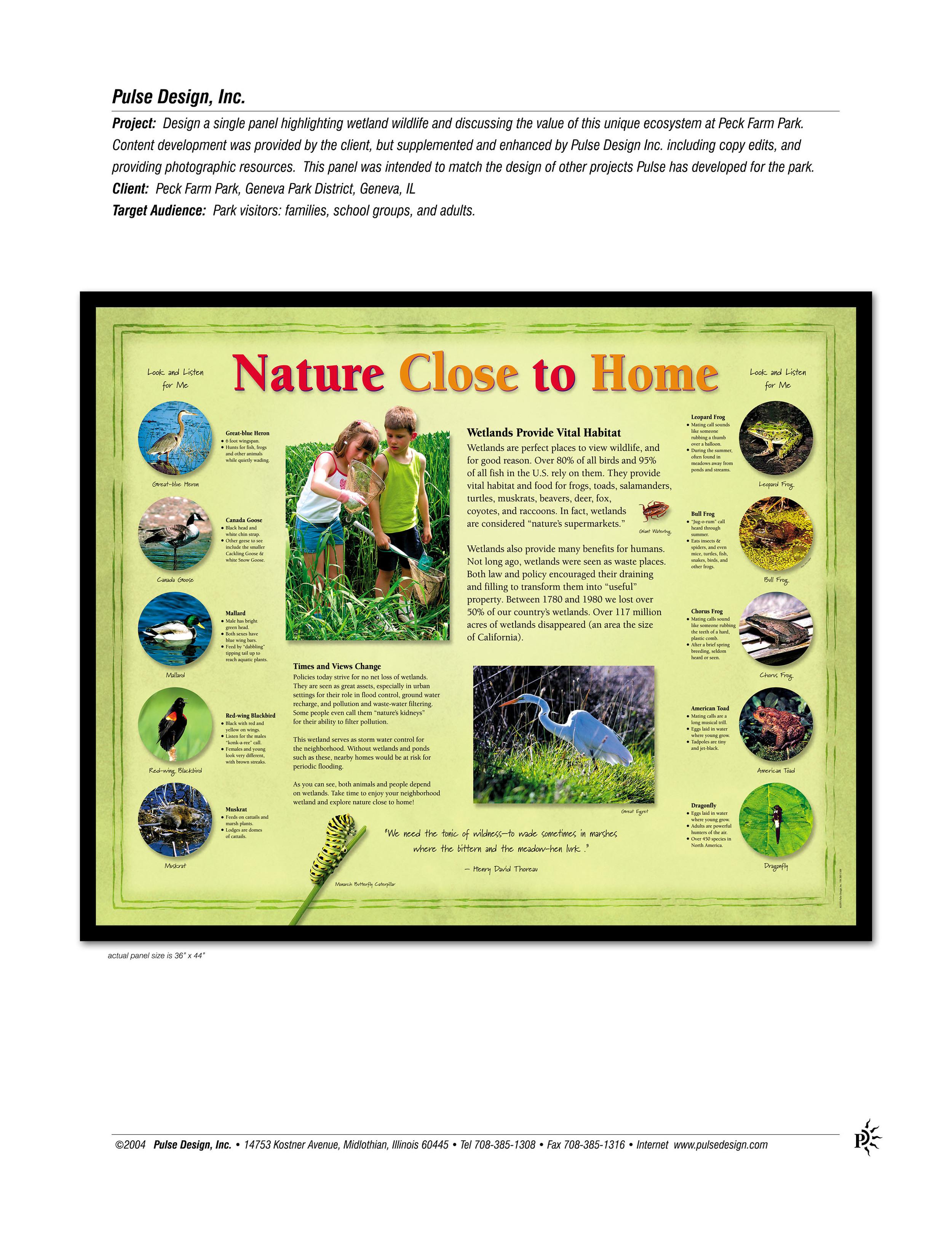 Peck-Farm-Park-Wetland-Sign-Pulse-Design-Inc.jpg