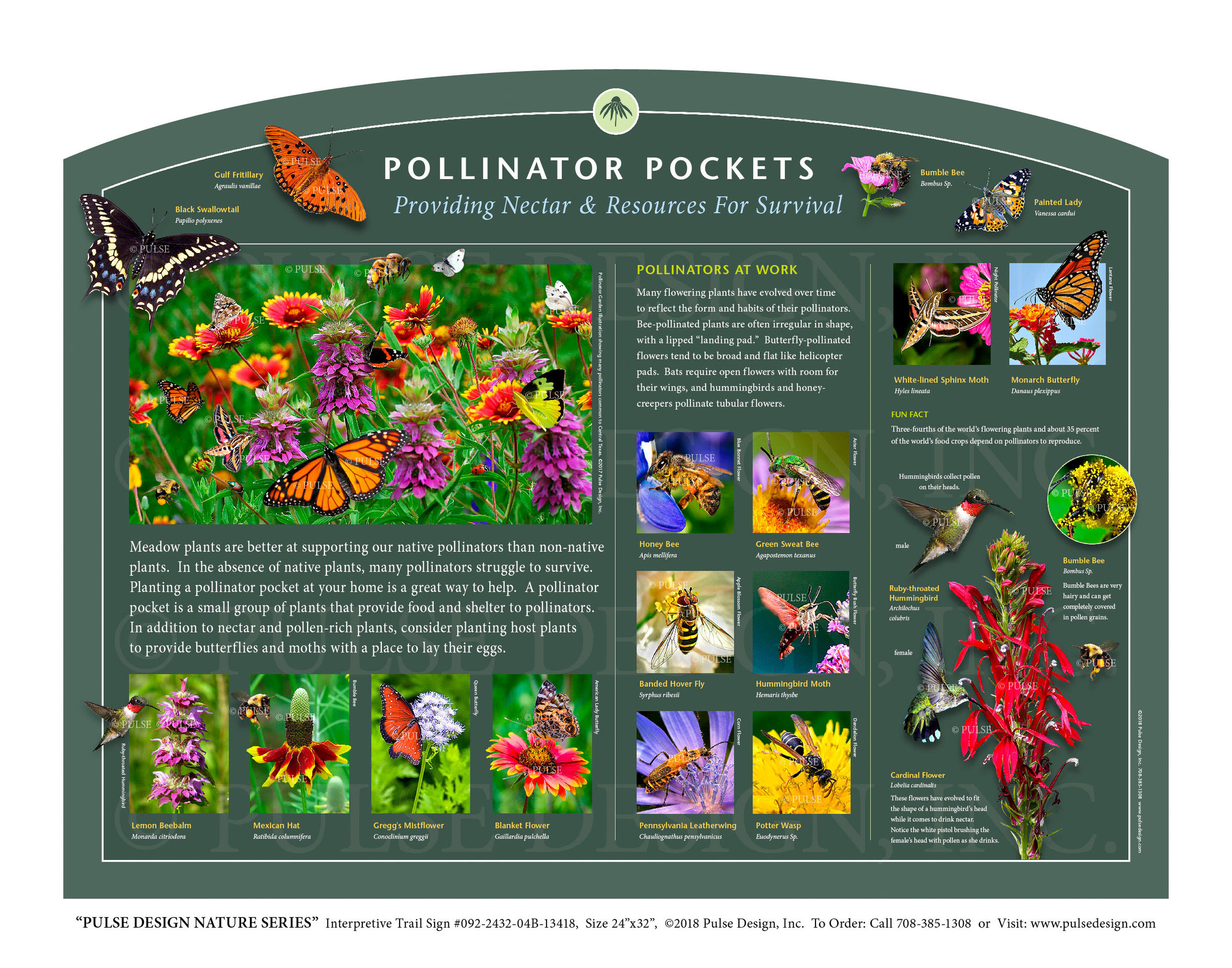 "Pulse Design provides Outdoor Interpretive Nature Trail Signs, Environmental Education Exhibits, Graphic Display Panels, Wayfinding Signage and Monuments, focused on Wildlife and Habitat throughout the United States. The  PULSE DESIGN NATURE SERIES  is a beautiful, ""Ready-to-Order"" and ""Customizable"" series of interpretive trail signs that cover many common nature subjects. See more signs from our  INSECTS & POLLINATOR SIGNS SERIES ."