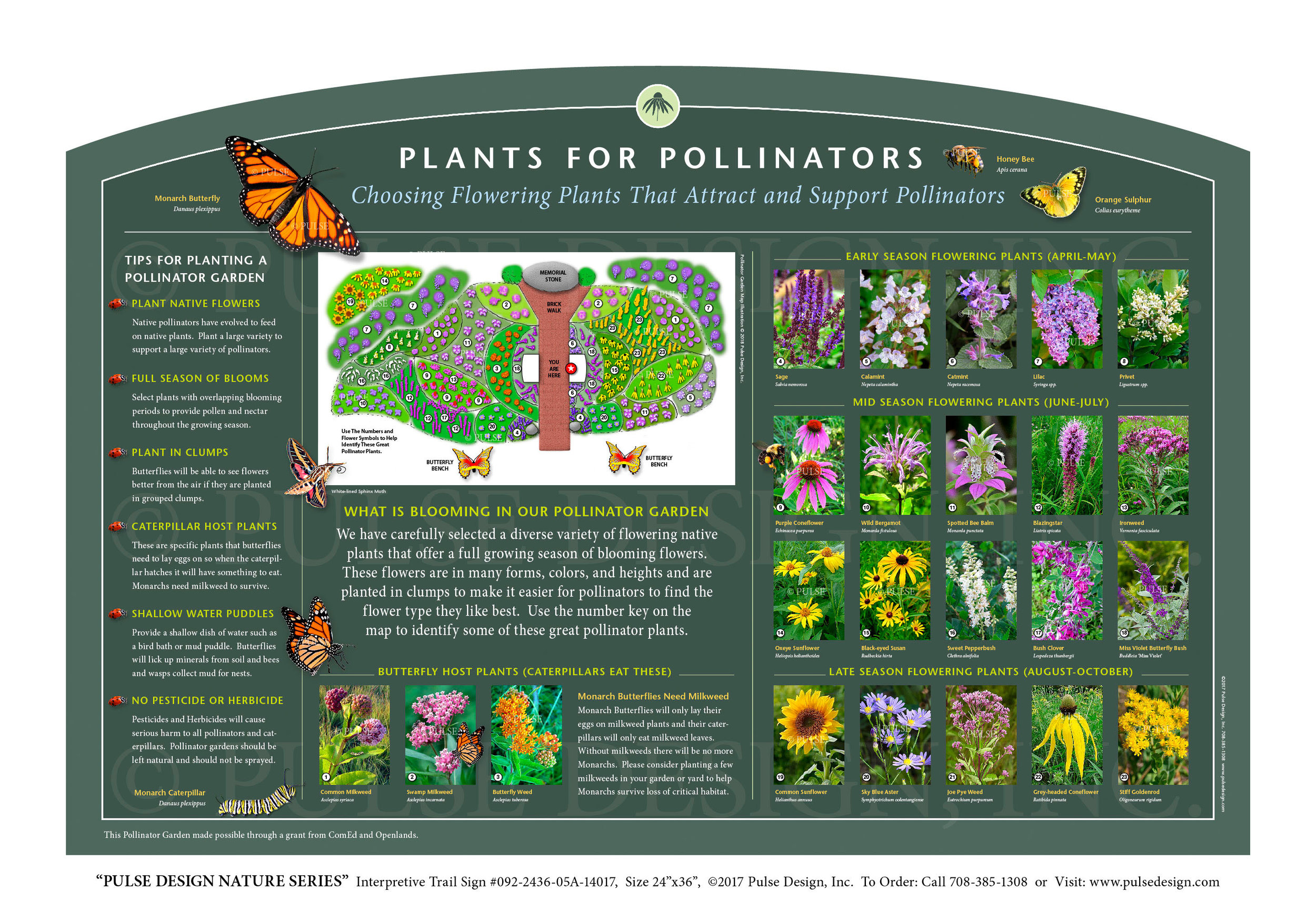"""Pulse Design provides Outdoor Interpretive Nature Trail Signs, Environmental Education Exhibits, Graphic Display Panels,Wayfinding Signage and Monuments, focused on Wildlife and Habitat throughout the United States. The  PULSE DESIGN NATURE SERIES is a beautiful, """"Ready-to-Order"""" and """"Customizable"""" series of interpretive trail signs that cover many common nature subjects. See more signs from our  INSECT & POLLINATOR SIGN SERIES  or  PRAIRIE & GRASSLANDS HABITAT SIGN SERIES ."""