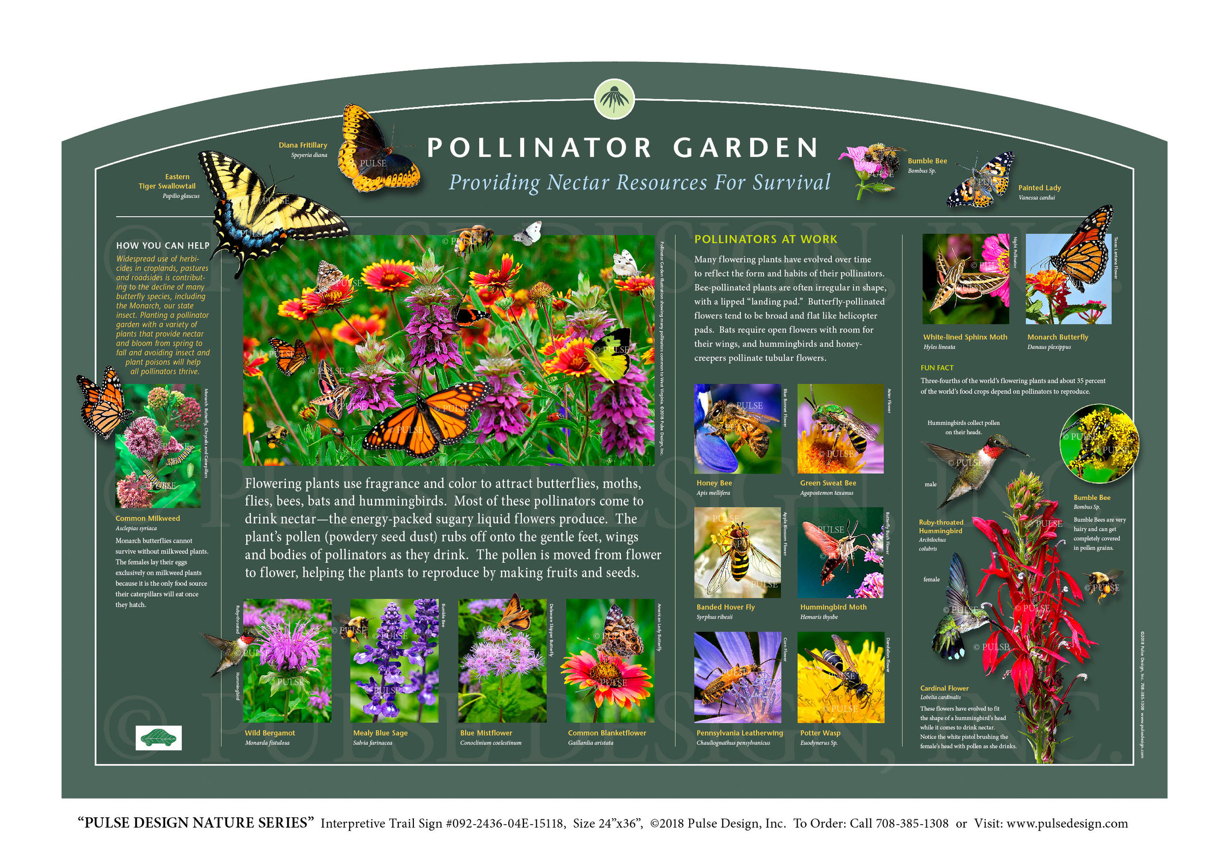 """Pulse Design provides Outdoor Interpretive Nature Trail Signs, Environmental Education Exhibits, Graphic Display Panels,Wayfinding Signage and Monuments, focused on Wildlife and Habitat throughout the United States. The  PULSE DESIGN NATURE SERIES is a beautiful, """"Ready-to-Order"""" and """"Customizable"""" series of interpretive trail signs that cover many common nature subjects. See more signs from our  INSECTS & POLLINATOR SIGNS SERIES ."""