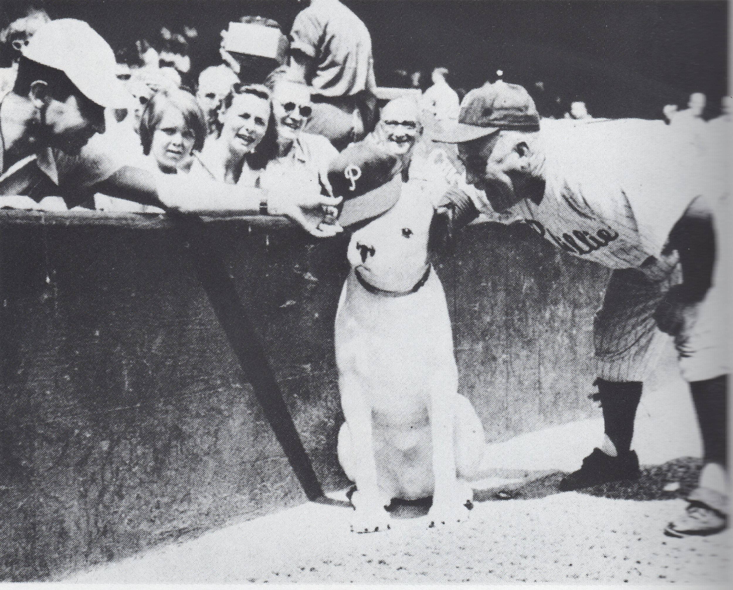 Nipper at a Philadelphia Phillies Game