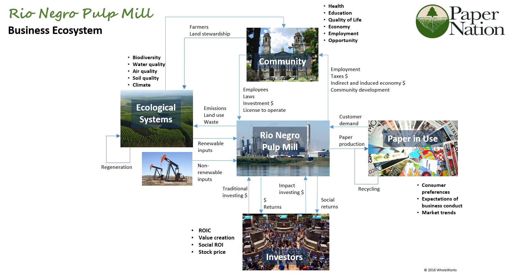 Rio Negro Pulp Mill Business Ecosystem