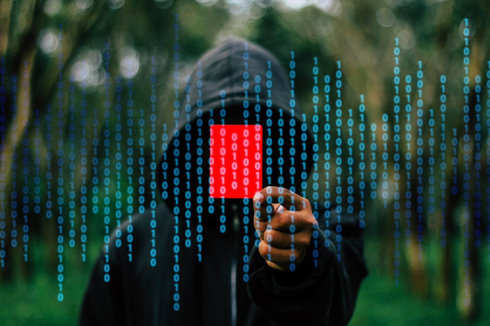 What is a Data Breach and How to Protect Yourself -