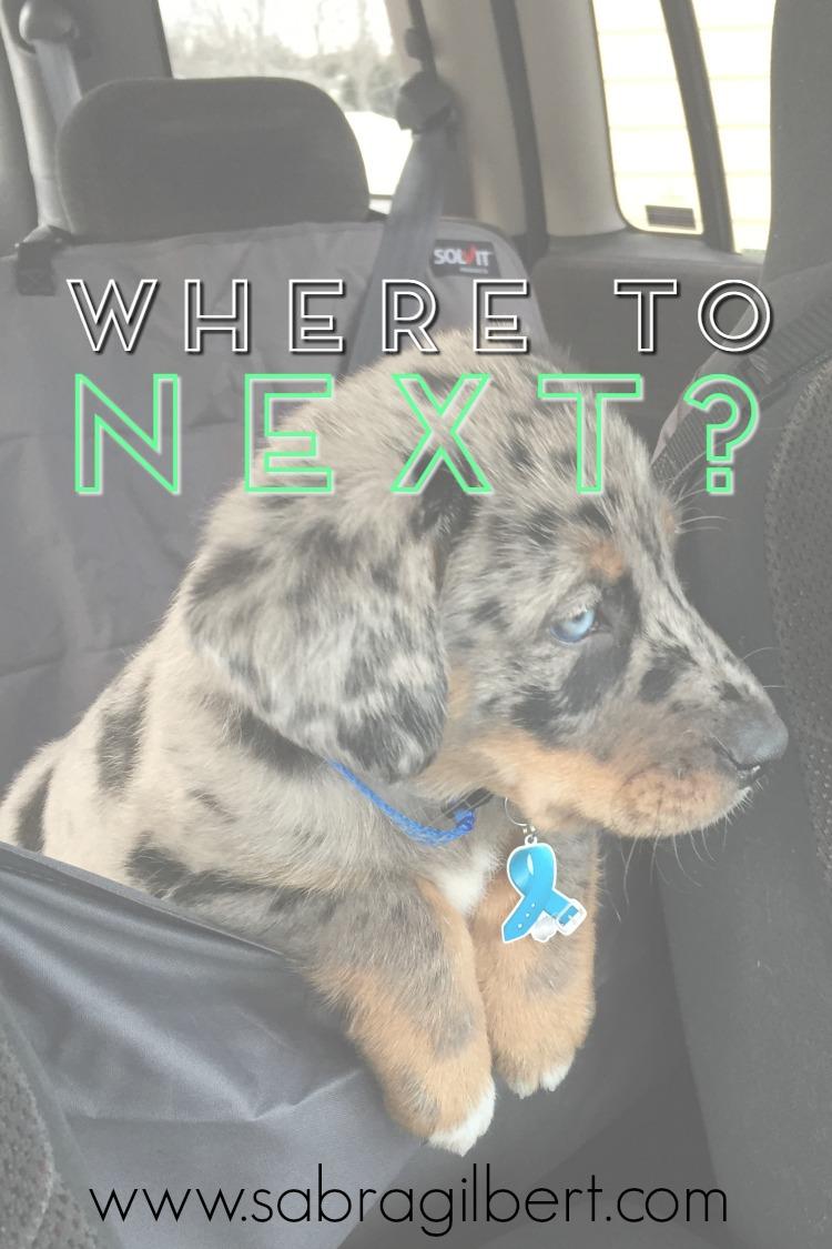 Where to Next? || Becoming Sabra Gilbert
