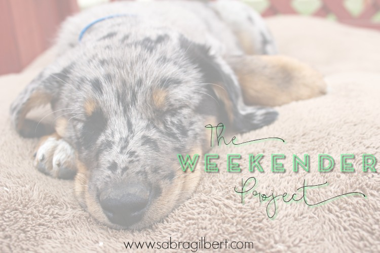 The Weekender Project || 24 - Becoming Sabra Gilbert