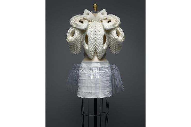 An ensemble by Iris van Herpen for her Spring/ Summer 2010 haute couture line