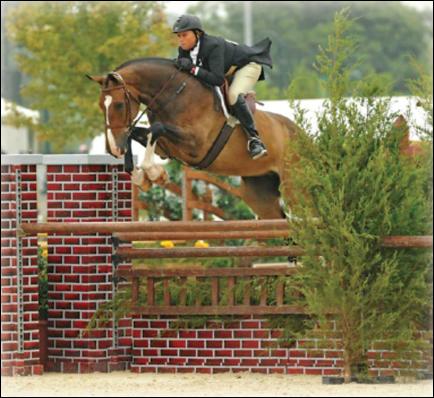 Karen A Kelley: Hunter/Jumper