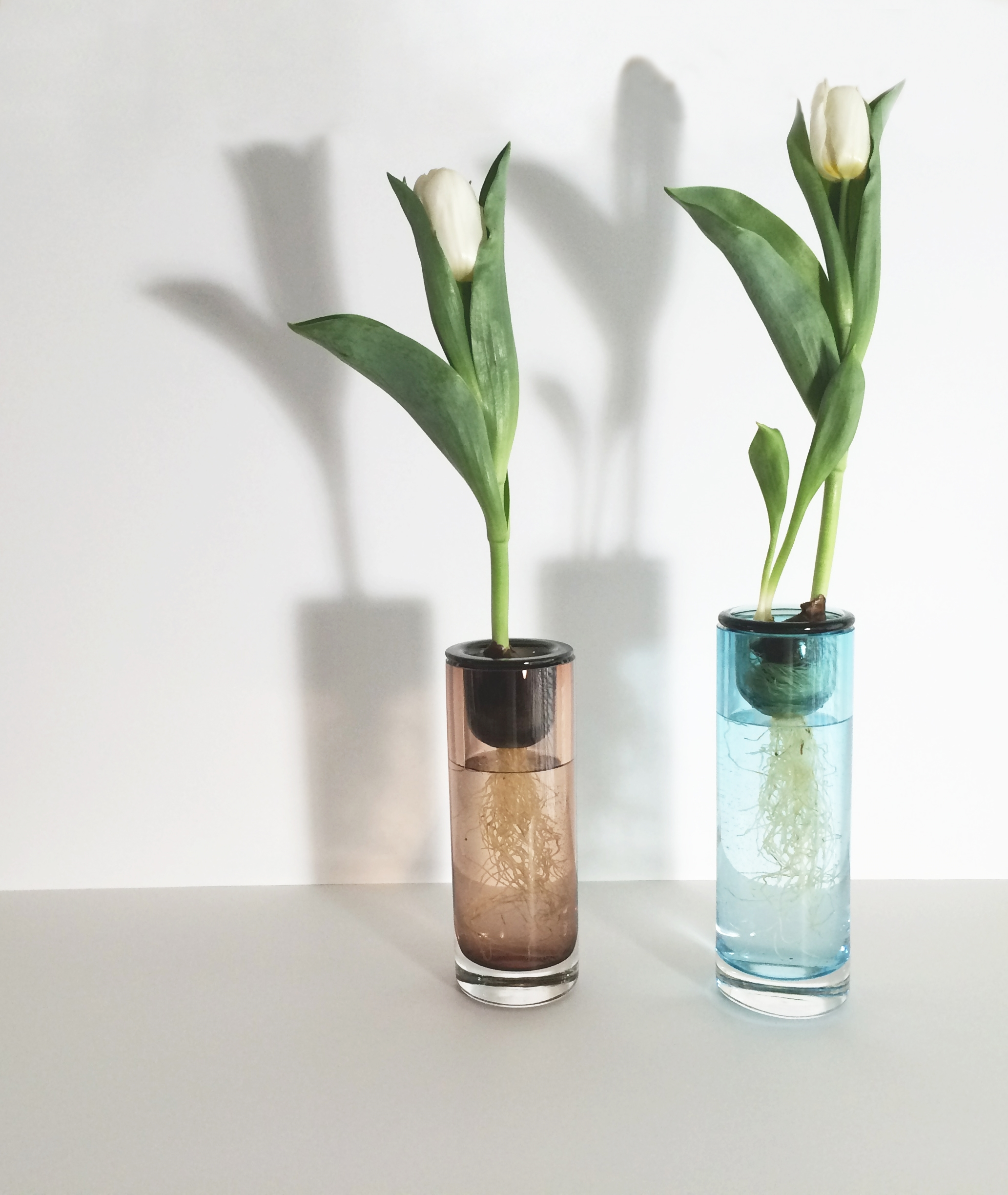 Pingo Vase by Bosque Design- On view at GROWTH, part of NYCxDesign