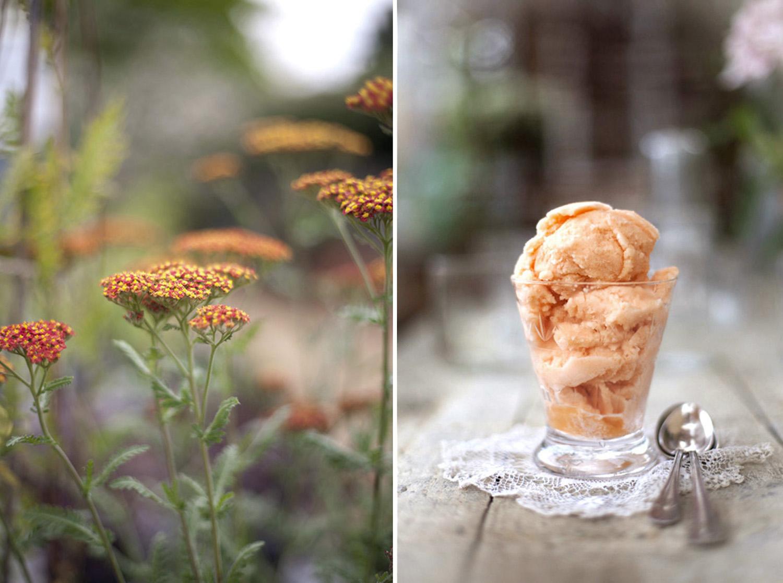 Lisa Barber Photo Ice cream.jpg