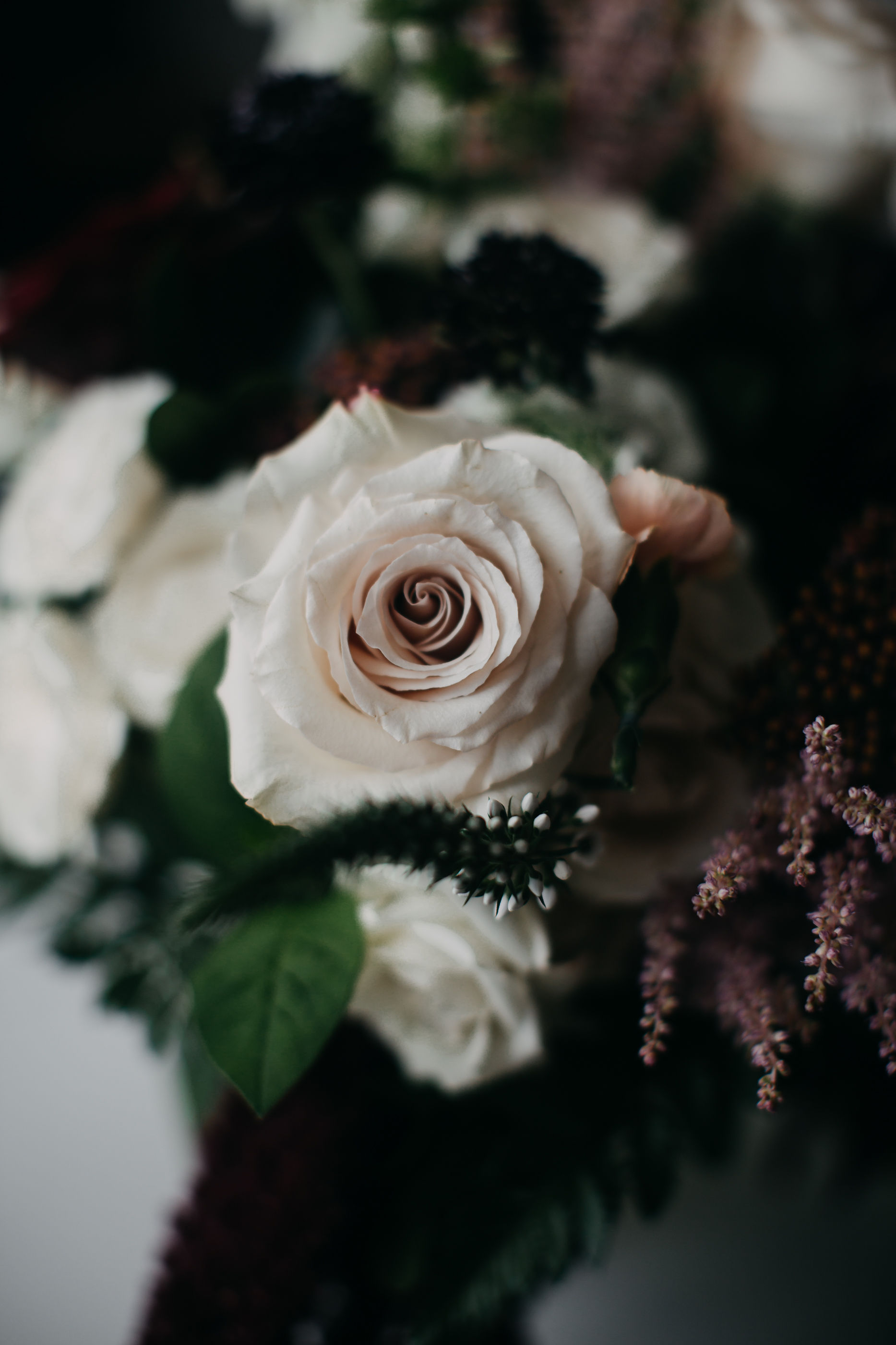 luna weddings photography