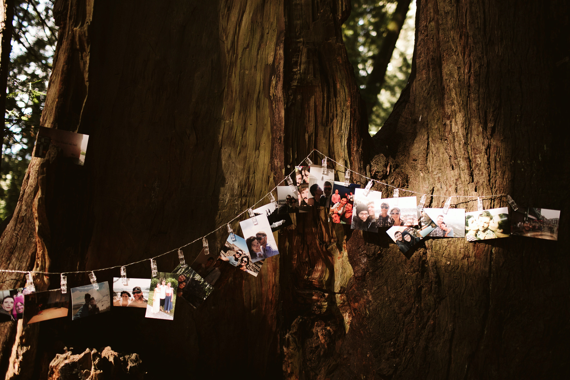 California-wedding-photographer-alfonso-flores-pamplin-groove-105.jpg