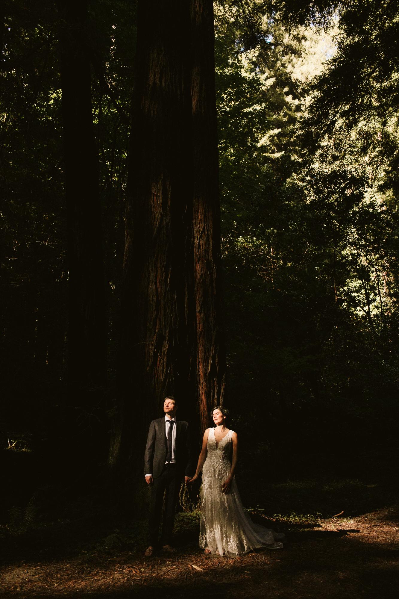 California-wedding-photographer-alfonso-flores-pamplin-groove-288.jpg