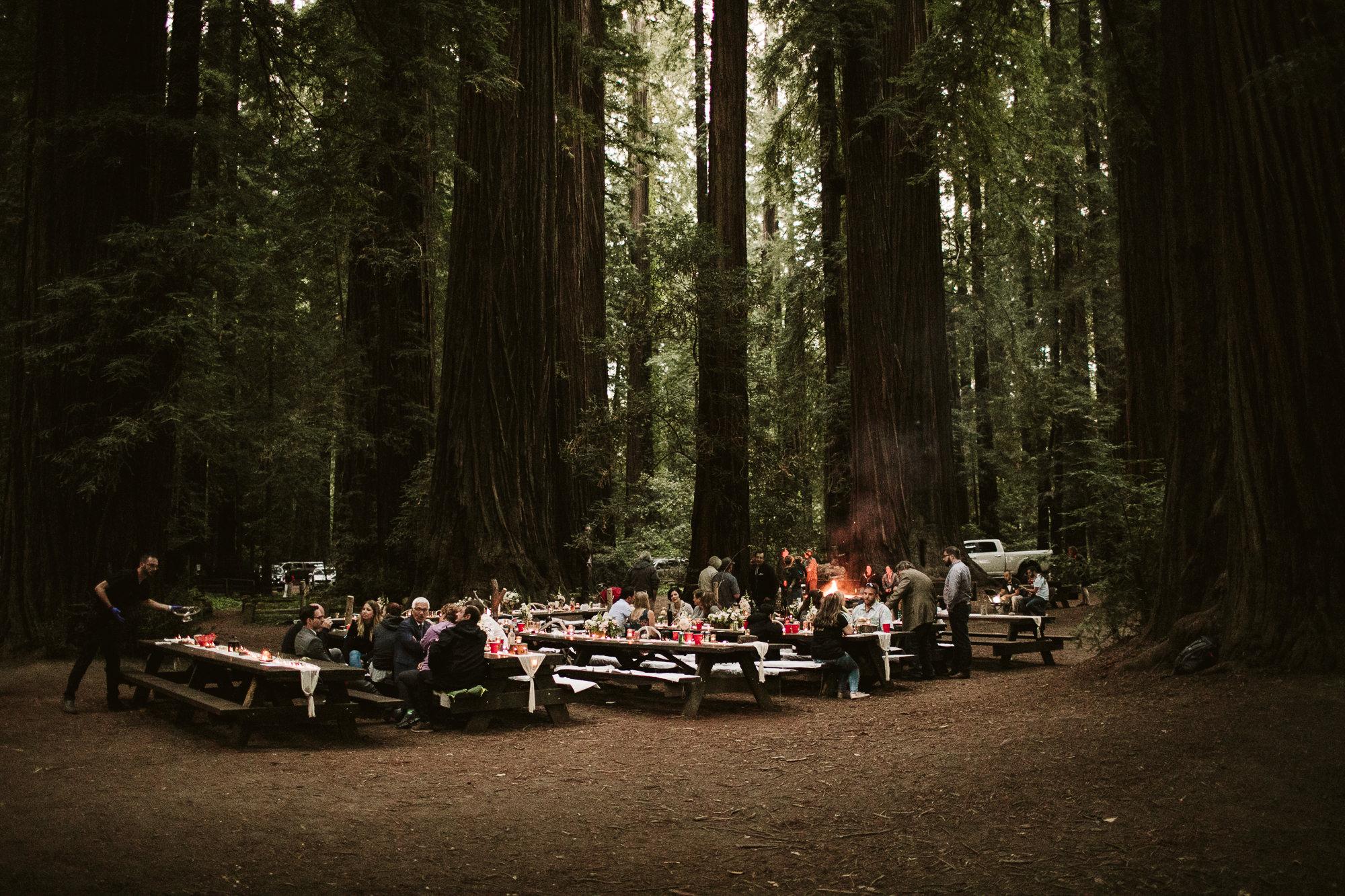 California-wedding-photographer-alfonso-flores-pamplin-groove-340.jpg