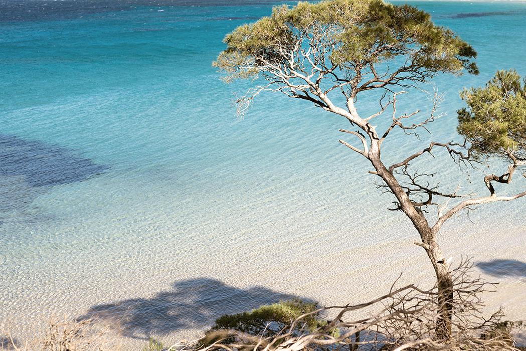 Mediterranean - Olivia Thébaut