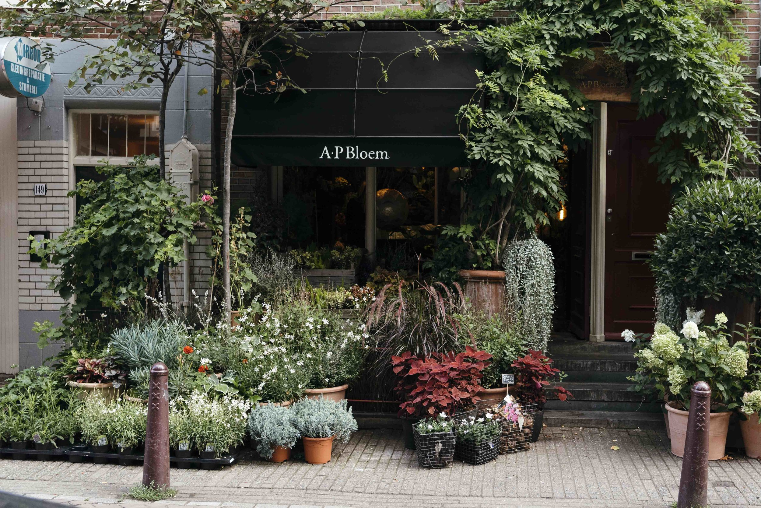 Amsterdam- Olivia Thébaut